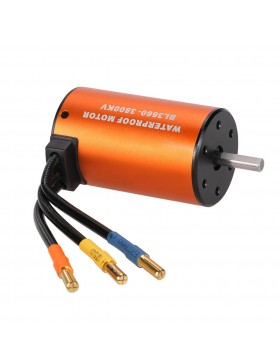 3660 sensorless brushless motor